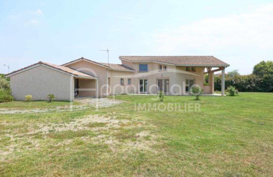 LOUÉE TOURNEFEUILLE Maison contemporaine T4 T5 de 165 m² sur 2000 m² au Calme et sans vis à vis